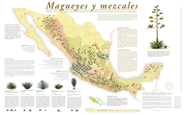Mapa maguey